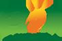 长沙市万博体育app苹果食品贸易有限公司_万博体育ios版批发_代理_贸易_餐饮万博体育ios版_湖南长沙高桥调味